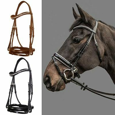 Mountain Horse Gaspari Leather Padded Noseband Browband Stud Dressage Bridle