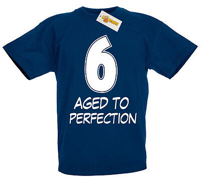 6 Aged Perfection T Shirt 6th Birthday Gifts Presents For Year Old Boys