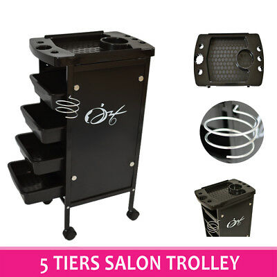 5 Tiers Hairdresser Salon Spa Multifunction Hair Trolley Rolling Storage Cart