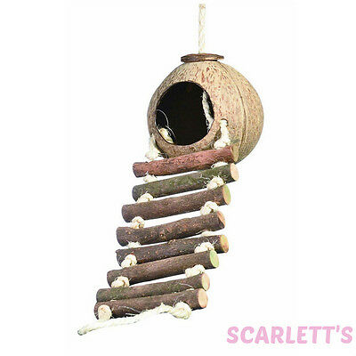 Coco Hideaway | Coconut bird small animal toy