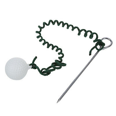 WD Golf Driving Ball Swing Hit Practice Training Aid