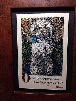 Framed Fluffy white Dog Hand Colored Picture; Blue Owl Colette Quotations CUTE
