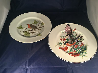 2 Collectors Plates Unmarked Bullfinch and Robin