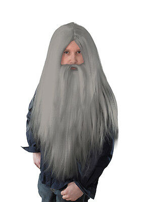Santa Grey Wizard Wig And Long Beard Old Men's Merlin Xmas Fancy Dress Costume