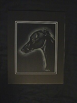 GREYHOUND Whippet original pastel on black by Cindy A. Conter SPIRIT IMAGE #22