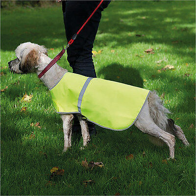 RTY Enhanced Visibility Reflective Dog Vest Nigh Time Walk Protective Jacket New