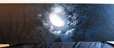 Canvas Art - Forest Moon - Wrapped and Ready to Hang