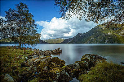 Norway Lake Mountains Trees Full Wall Mural Photo Wallpaper Print Home 3D Decal