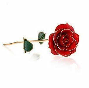24K Gold Dipped Rose - Red