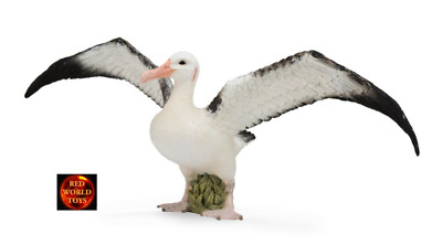 Wandering Albatross Sea Bird Model by CollectA 88765 *New 2016 model*