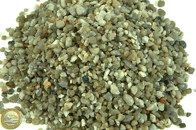 Nobitz Reinquarzkies 5,6-8mm 10kg, Aquariumkies, Terrariumkies, Aquariumgrund