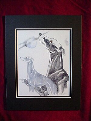 Print of Stylized watercolor Whippet Greyhound and moon  #37 Cindy A. Conter