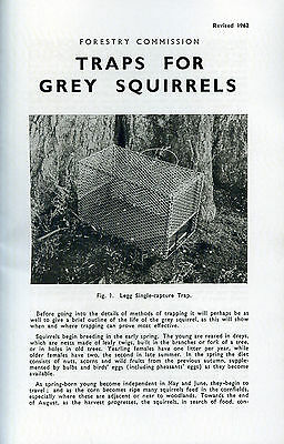 squirrel traps trapping vermin grey pest control forestry gamekeeping shooting