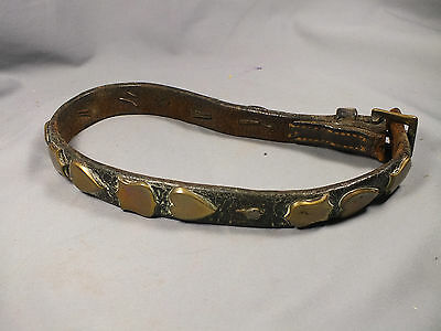 Antique Vintage Leather & Brass Buckle Dog Collar