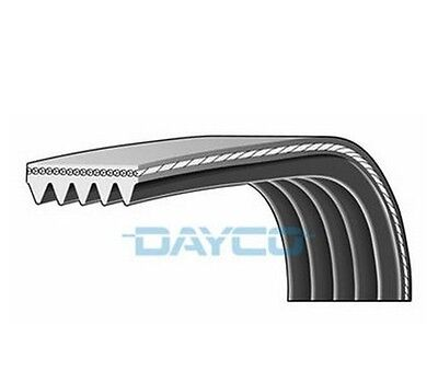Dayco Poly V Belt 5 Ribs Multi-Ribbed Belt 5PK1095S Auxiliary,Fan Drive