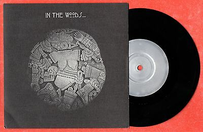 IN THE WOODS Let There Be More Light (Roger Waters) RARE, Misanthropy OVL68 1998