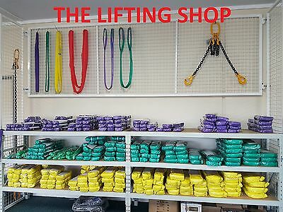 (Pack of 2) 2T x 2M Flat Webbing Lifting Sling Polyester Lifting Strap Websling