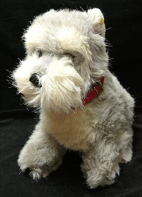 Vintage STEIFF Large GREY & WHITE SCHNAUZER with Red Collar -Yellow Tag & Button