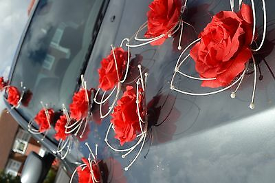 wedding car decorations, butterflies, Automobile di cerimonia nuziale deco RED