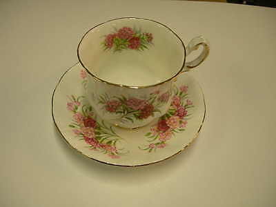 Paragon. Sweet Williams! English Tea Cup & Saucer! Fine Bone China! England!