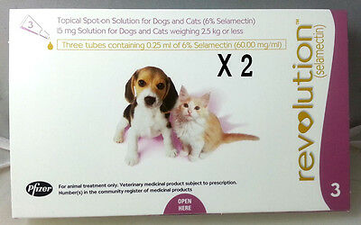 Revolution For Cats Kittens Puppies Dogs Up To 2.5 kg - 6 Pack