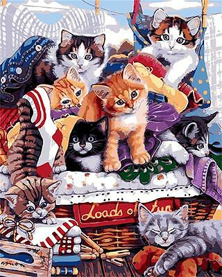 16*20'' DIY Paint By Number Cats kit Acrylic Painting Beauty On Canvas SPA572