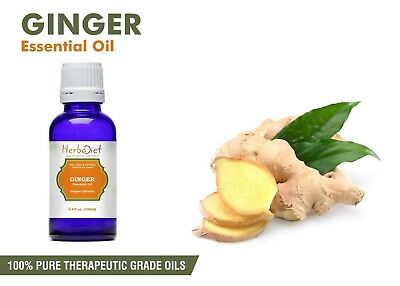 Ginger Essential Oil 100% Pure Natural Aromatherapy Therapeutic Grade Oils