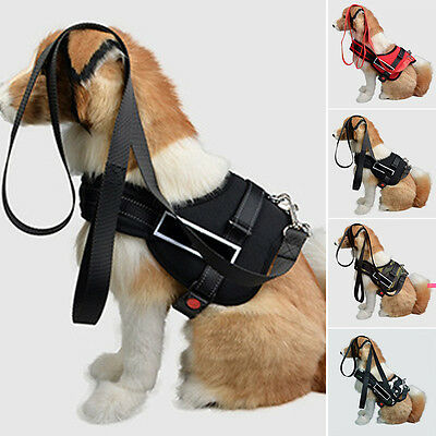 Heavy Duty Dog Pet Harness Padded Extra Big Large Medium Small Dog Harness Vest