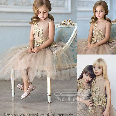Tulle Flower Girl Dress Party Birthday Bridesmaid Dress Lace Appliques Ball Gown