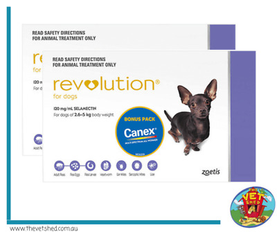 Revolution 12 pack For Dogs 2.7- 5kg Purple Plus FREE Canine all wormer worming