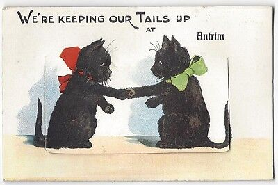ANTRIM Novelty Pull Out Postcard with Scenes, Black Cats with Bows, Unused