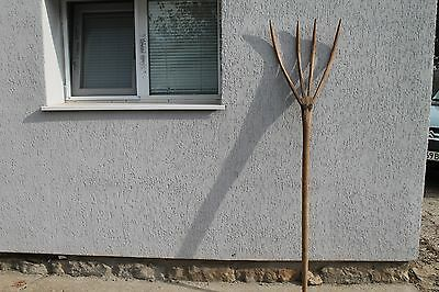 Wooden handmade prong fork for garden
