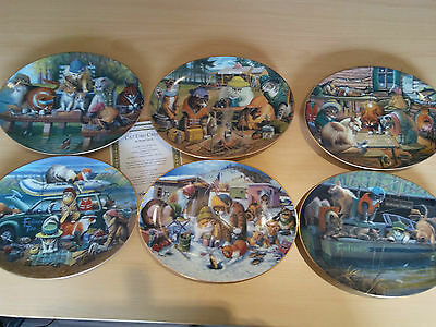 6 x LIMITED EDITION FRANKLIN MINT CAT PLATES - OVAL