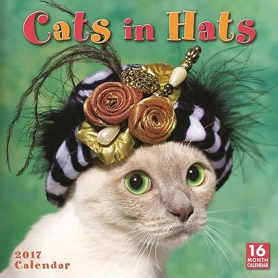 Cats In Hats Wall Calendar 2017