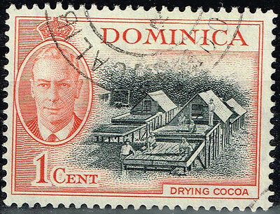 Dominica Flora Plants Drying Cocoa stamp 1949