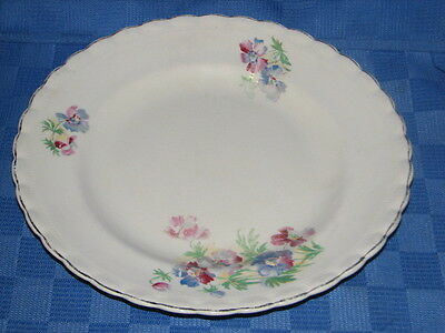 J &G Meakin Plate, Regd 391413. Made in England