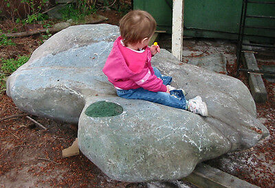 JADE Boulder carved by nature Light green BC Nephrite/rough carving stone 1 ton