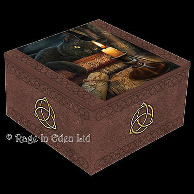 *THE WITCHING HOUR* Fantasy Black Cat Art Trinket Box With Mirror By Lisa Parker