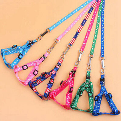 Adjustable Size for Pet Small Dog Puppy Cat Nylon Harness Collar Leash Lead Cute