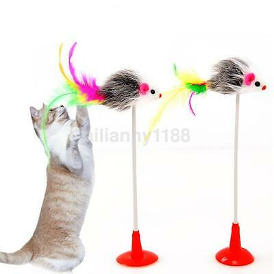 Interactive Cat Toys Funny False Mouse Bottom Sucker Cat Playing Scratch Toy AU
