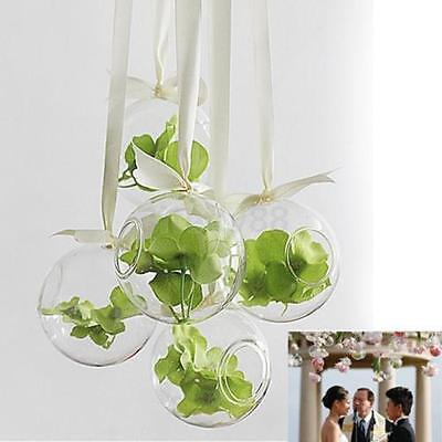 4PC SGlobe Ball Glass Hanging Plant Terrarium Flower Vase Pot Wall Wedding Decor