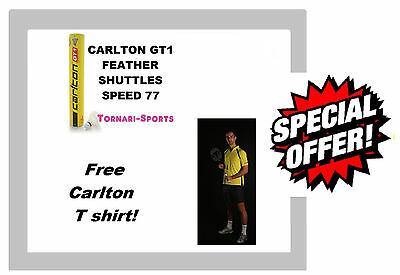 CARLTON GT1 / 77 FEATHER SHUTTLES SHUTTLECOCKS TUBE of 12 Free T Shirt!