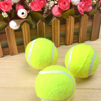 Stylish Tennis Balls for Outdoor Fun Playing Activity for Pet Dog Play Balls New