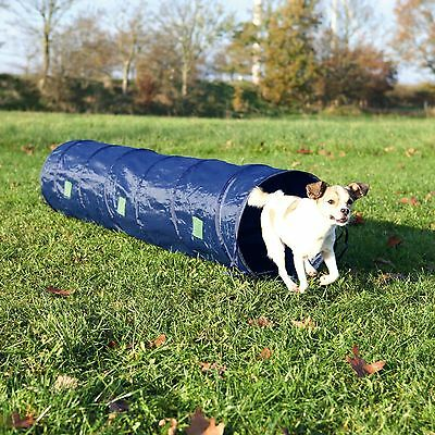 Training Agility Tunnel with Ground Anchors for Small Dogs & Puppies 2m