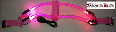 """BRIGHT LED Flashing, USB RECHARGEABLE LIGHT UP Dog HARNESS-"""" UK SUPPLIER"""""""