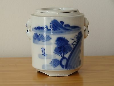 c.19th - Antique Chinese Blue and White Porcelain Tea Pot Jar