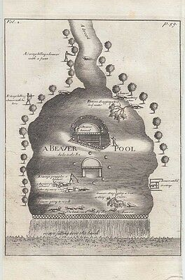 1735  Lahontan Engraving of a Beaver Pond - Scarce English Edition