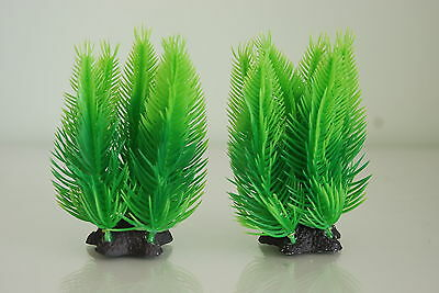Aquarium Plant Green Fern x 2 With Star Weighted Base 4 inches high