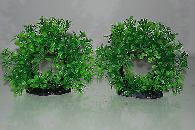 Aquarium 2 x Realistic Green Ring Plants 17 x 5 x 14 cms For All Aquariums