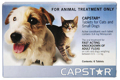 Capstar Flea Tablets - 6 Pack Oral Flea Treatment Small Dogs & Cats under 11Kg
